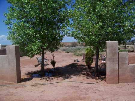 *HUNT FAMILY, CEMETERY - Navajo County, Arizona | CEMETERY *HUNT FAMILY - Arizona Gravestone Photos