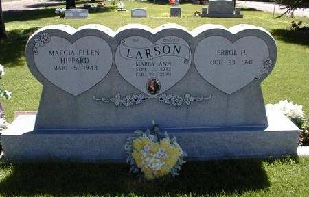 LARSON, ERROL H. - Navajo County, Arizona | ERROL H. LARSON - Arizona Gravestone Photos
