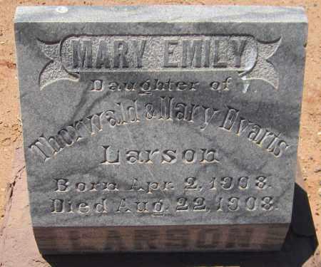LARSON, MARY EMILY - Navajo County, Arizona | MARY EMILY LARSON - Arizona Gravestone Photos