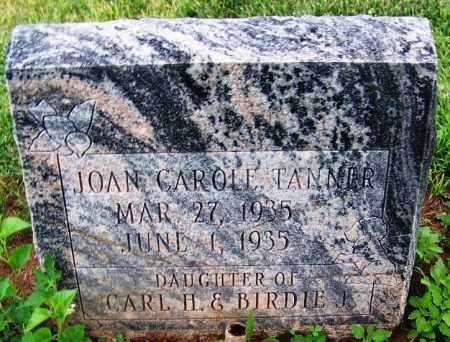 TANNER, JOAN CAROLE - Navajo County, Arizona | JOAN CAROLE TANNER - Arizona Gravestone Photos