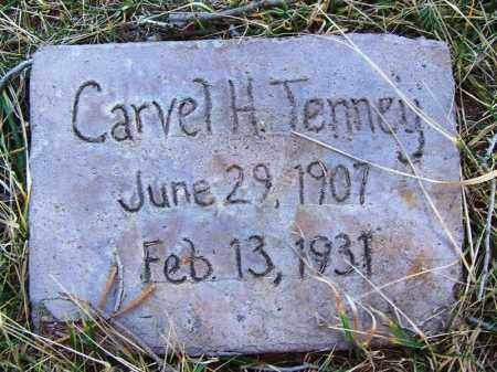 TENNEY, CARVEL H. - Navajo County, Arizona | CARVEL H. TENNEY - Arizona Gravestone Photos