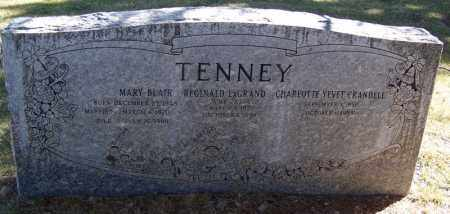 TENNEY, MARY - Navajo County, Arizona | MARY TENNEY - Arizona Gravestone Photos