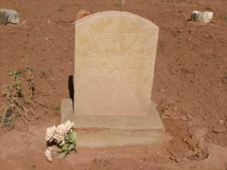 WHITE, JOSEPH WM. - Navajo County, Arizona | JOSEPH WM. WHITE - Arizona Gravestone Photos