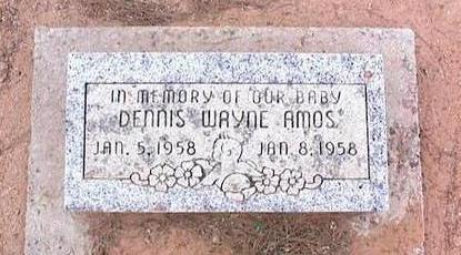 AMOS, DENNIS WAYNE - Pinal County, Arizona | DENNIS WAYNE AMOS - Arizona Gravestone Photos