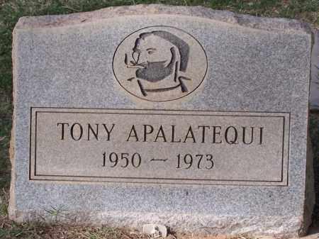 APALATEQUI, TONY - Pinal County, Arizona | TONY APALATEQUI - Arizona Gravestone Photos