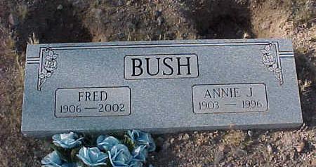 BUSH, ANNIE  J. - Pinal County, Arizona | ANNIE  J. BUSH - Arizona Gravestone Photos
