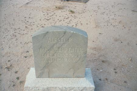 CARPENTER, ALFRED P. - Pinal County, Arizona | ALFRED P. CARPENTER - Arizona Gravestone Photos