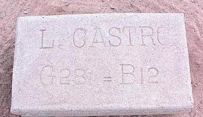 CASTRO, L. - Pinal County, Arizona   L. CASTRO - Arizona Gravestone Photos