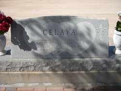 ENCINAS CELAYA, CONSUELO - Pinal County, Arizona | CONSUELO ENCINAS CELAYA - Arizona Gravestone Photos