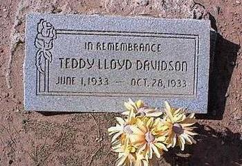 DAVIDSON, TEDDY LLOYD - Pinal County, Arizona | TEDDY LLOYD DAVIDSON - Arizona Gravestone Photos