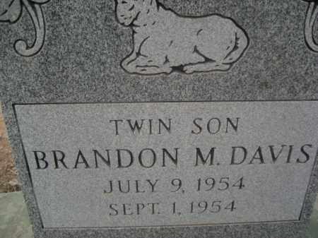 DAVIS, BRANDON M. - Pinal County, Arizona | BRANDON M. DAVIS - Arizona Gravestone Photos