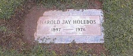 HOLEBOS, HAROLD J. - Pinal County, Arizona | HAROLD J. HOLEBOS - Arizona Gravestone Photos