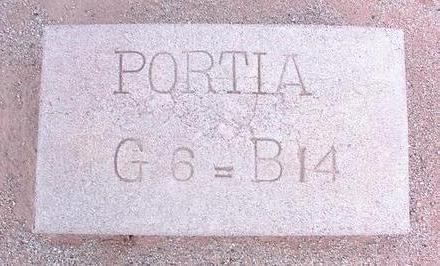 PORTIA, UNKNOWN - Pinal County, Arizona | UNKNOWN PORTIA - Arizona Gravestone Photos
