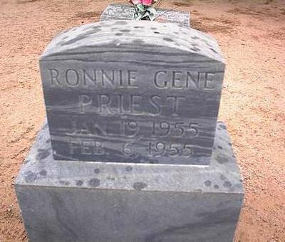 PRIEST, RONNIE GENE - Pinal County, Arizona | RONNIE GENE PRIEST - Arizona Gravestone Photos