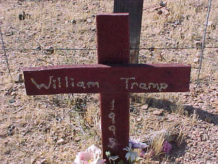 TRAMP, WILLIAM - Pinal County, Arizona | WILLIAM TRAMP - Arizona Gravestone Photos