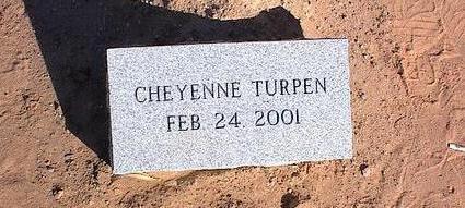 TURPEN, CHEYENNE - Pinal County, Arizona | CHEYENNE TURPEN - Arizona Gravestone Photos