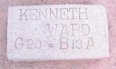 WARD, KENNETH - Pinal County, Arizona | KENNETH WARD - Arizona Gravestone Photos