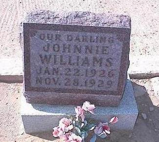 WILLIAMS, JOHNNIE - Pinal County, Arizona | JOHNNIE WILLIAMS - Arizona Gravestone Photos