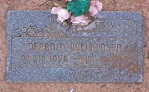 WILLIAMSON, DEBRA D. - Pinal County, Arizona | DEBRA D. WILLIAMSON - Arizona Gravestone Photos