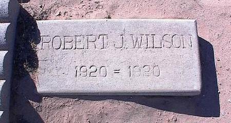 WILSON, ROBERT J. - Pinal County, Arizona | ROBERT J. WILSON - Arizona Gravestone Photos