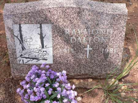 DALTON, RAYMOND - Santa Cruz County, Arizona | RAYMOND DALTON - Arizona Gravestone Photos