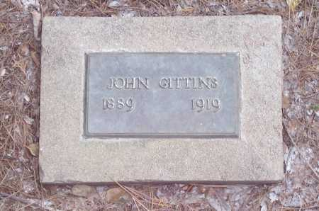 GITTINS, JOHN - Santa Cruz County, Arizona | JOHN GITTINS - Arizona Gravestone Photos
