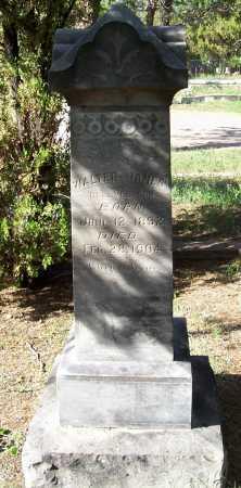 HANNAH, WALTER JAMES - Santa Cruz County, Arizona | WALTER JAMES HANNAH - Arizona Gravestone Photos