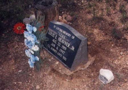 HEAVNER, LOUIS E. - Santa Cruz County, Arizona   LOUIS E. HEAVNER - Arizona Gravestone Photos