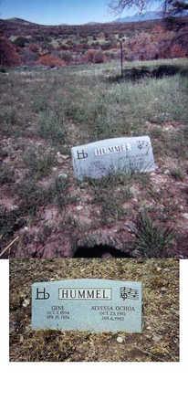 OCHOA HUMMEL, ALVESSA - Santa Cruz County, Arizona | ALVESSA OCHOA HUMMEL - Arizona Gravestone Photos