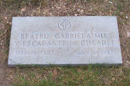 MIX, BEATRIZ GABRIELA - Santa Cruz County, Arizona | BEATRIZ GABRIELA MIX - Arizona Gravestone Photos