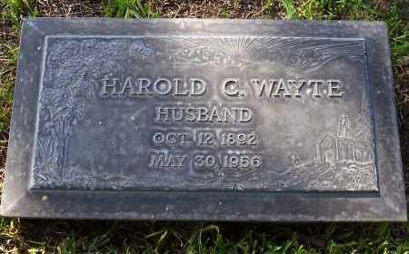 WAYTE, HAROLD C. - Santa Cruz County, Arizona | HAROLD C. WAYTE - Arizona Gravestone Photos