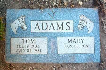 ADAMS, DAVID WHITFIELD - Yavapai County, Arizona | DAVID WHITFIELD ADAMS - Arizona Gravestone Photos