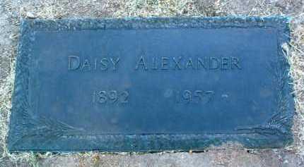 ALLERT ALEXANDER, DAISY - Yavapai County, Arizona | DAISY ALLERT ALEXANDER - Arizona Gravestone Photos