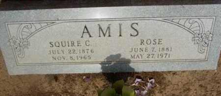 AMIS, ROSE - Yavapai County, Arizona | ROSE AMIS - Arizona Gravestone Photos