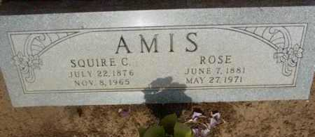 AMIS, ROSE - Yavapai County, Arizona | ROSE AMIS - Arizona Gravestone Photos