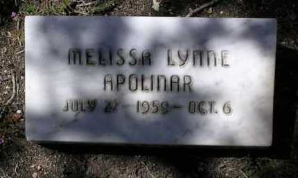 APOLINAR, MELISSA LYNNE - Yavapai County, Arizona | MELISSA LYNNE APOLINAR - Arizona Gravestone Photos