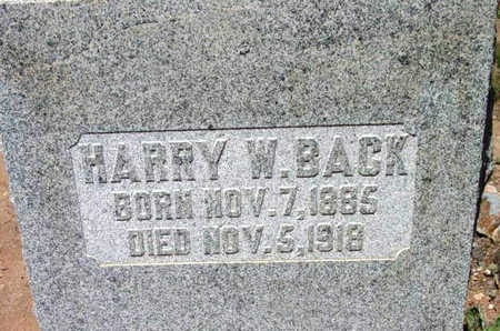 BACK, HARRY WALES - Yavapai County, Arizona | HARRY WALES BACK - Arizona Gravestone Photos