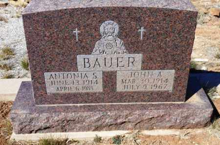 BAUER, JOHN A. - Yavapai County, Arizona | JOHN A. BAUER - Arizona Gravestone Photos