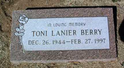 LANIER BERRY, TONI - Yavapai County, Arizona | TONI LANIER BERRY - Arizona Gravestone Photos