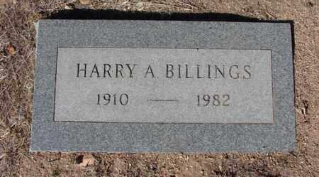 BILLINGS, HARRY ARTHUR - Yavapai County, Arizona | HARRY ARTHUR BILLINGS - Arizona Gravestone Photos