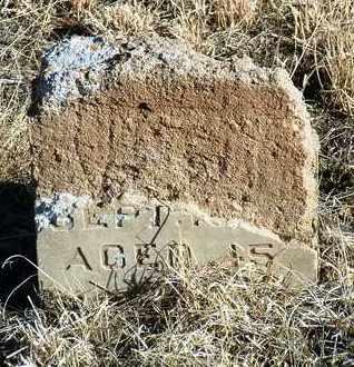 BLAZEK, JOSEPH - Yavapai County, Arizona | JOSEPH BLAZEK - Arizona Gravestone Photos