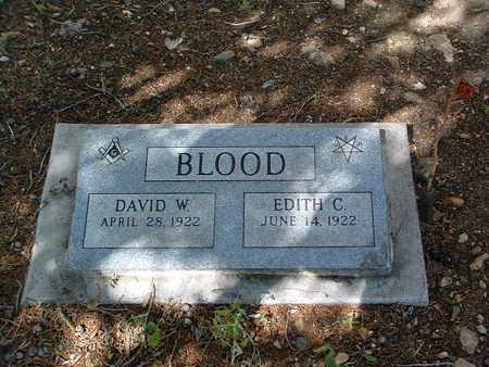 BLOOD, DAVID W. - Yavapai County, Arizona | DAVID W. BLOOD - Arizona Gravestone Photos
