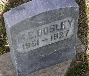 BOSLEY, MARY E. - Yavapai County, Arizona   MARY E. BOSLEY - Arizona Gravestone Photos