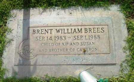 BREES, BRENT WILLIAM - Yavapai County, Arizona | BRENT WILLIAM BREES - Arizona Gravestone Photos