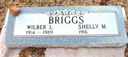 BRIGGS, SHELLY M. - Yavapai County, Arizona | SHELLY M. BRIGGS - Arizona Gravestone Photos