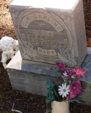BRISENDINE, JANET MAUREEN - Yavapai County, Arizona | JANET MAUREEN BRISENDINE - Arizona Gravestone Photos