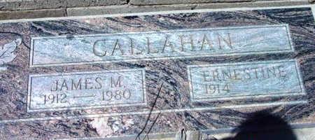CALLAHAN, JAMES MARSHALL - Yavapai County, Arizona | JAMES MARSHALL CALLAHAN - Arizona Gravestone Photos