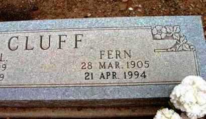 COMBS CLUFF, FERN - Yavapai County, Arizona | FERN COMBS CLUFF - Arizona Gravestone Photos