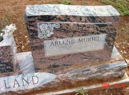 COFFLAND, ARLENE MURIEL - Yavapai County, Arizona | ARLENE MURIEL COFFLAND - Arizona Gravestone Photos