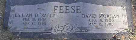 DANIELS FEESE, LILLIAN D. - Yavapai County, Arizona | LILLIAN D. DANIELS FEESE - Arizona Gravestone Photos